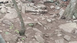 US Open of Mountain Biking Live from the Rock...