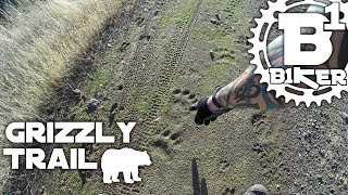 Grizzly Trail - Mammoth Bar OHV - Auburn, Ca -...