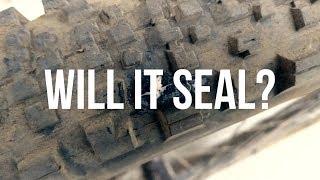 Orange Seal Endurance Test - Will it Seal?