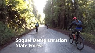 Soquel Demo State Forest - Edit with Music...