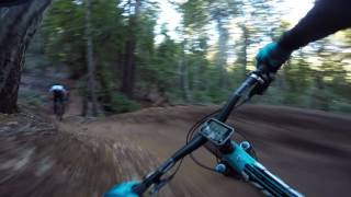 Demo Forest Flow Trail - Follow Cam (Gimbal Shot)