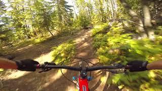 Nelson BC Mountain Biking | Space Junk | Dole...