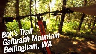 Bob's Trail on Galbraith Mountain