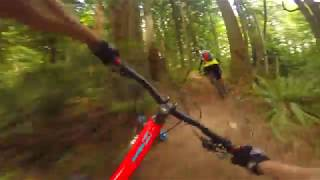 Sunday Ride With Tom Tom- Jeff Kendall-Weed...