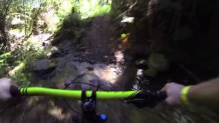 Fourforty Mountain Bike Park, New Zealand POV