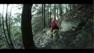 Freeride Mountain Biking New Zealand