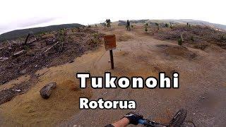 Tukonohi, Redwoods, Rotorua