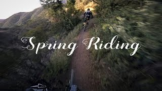 Spring Riding (featuring the color green)