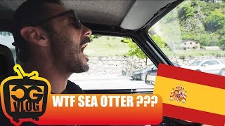 Let's Go To The FIRST SEA OTTER EUROPE in...
