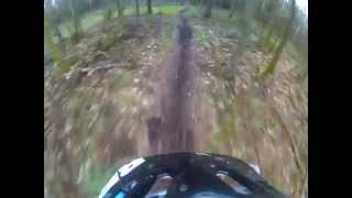Local Yorkshire trails - No3