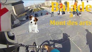 VTT Urbain | Balade à Mont des arts | Besoin...