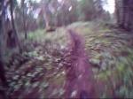 South Nanaimo Trails
