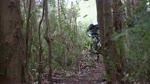 FreeRide in Camacha