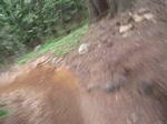 Struggle trail (Mount Spicak)