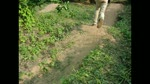Backyard Pump Track in Slomotion