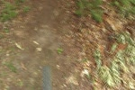 Trail #1