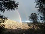 Guy goes nutz over double rainbow