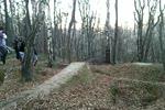 Trupi las gapik przez wawoz - 12 metrow