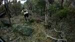 An All Mountain track in the North of Sydney