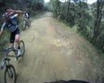 Down Dan Cook Trail - Mt. Diablo