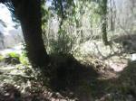 Montecavo - Sentiero 4