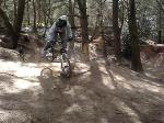 BackFlips At Pines