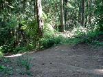 donkey trail