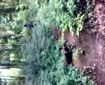 My bridleway jump attempt