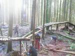2007 Trail Day - Giant Killer @ The Woodlot