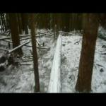 Snakes and Ladders @ The Woodlot  - Helmet cam...