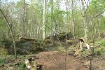 new rock garden, drop, jump section