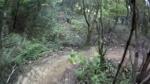 John Brown Trail @ Santos MTB Park