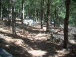 29'er XC Boulders (Middle) Tokai Forest