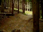 Inners Wood Slow Mo