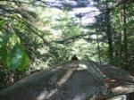 off trail drop
