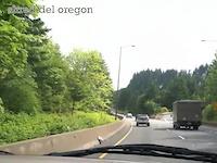 Shred del Oregon