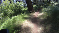 Short video of my first ride down Bullit Trail...