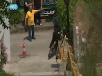 Race Down 2 Da Port by net tv