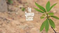 The 2011 Crawfish classic