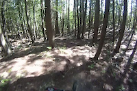 Larch Hills Traverse - Mica Ravine to FSR #110