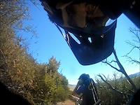 Riding With Batman Pt. 1