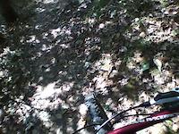 DH Trail- Ravine Loop- Rampant Helment Cam