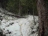 Snow day - Big Ed - Nov.12/2011