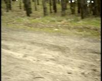 [MTB] aDHd Trail No:1