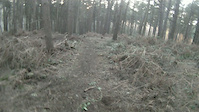 delamere forest new road gap and kicker