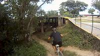 Parque @ waimea eucalipto 23fev