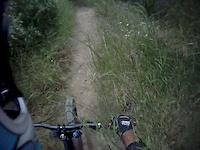 Rutted Horse Trail