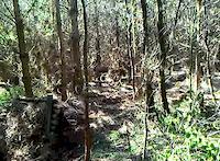 skull trail jump