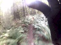 Tokul West Bobsled Bttm Trail