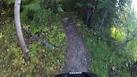 Fernie Mtn Biking